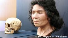 Un cráneo de mujer del periodo prehistórico Jomon de Japón, desenterrado en Hokkaido, y un rostro modelo reproducido con el uso de la tecnología de ADN.