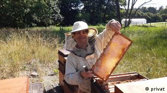 Paula Gioia taking out a honeycomb from one of her beehives.