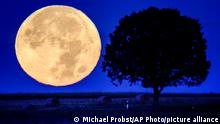 The full moon sets behind the hills of the Taunus region near Wehrheim, Germany, early Tuesday, Sept.21, 2021. (AP Photo/Michael Probst)