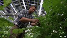 Eco India Sendung 23.09.2021 Germany, solar-powered farm, photovoltaic greenhouse, berries, solar panels