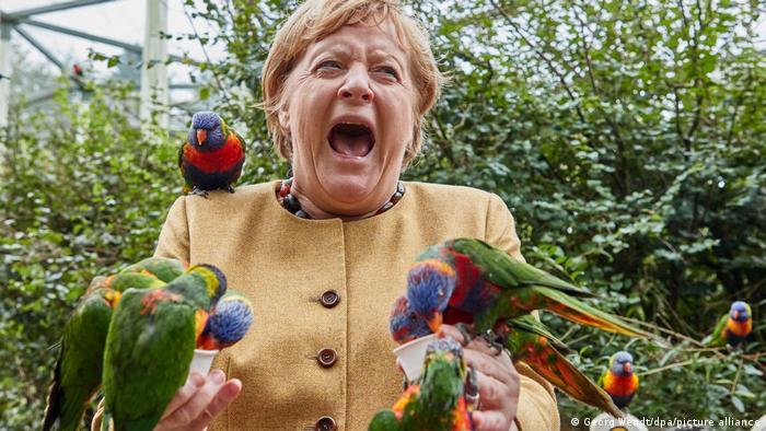 صورة للمستشارة الألمانية أنغيلا ميركل في حديقة مارلو للطيور