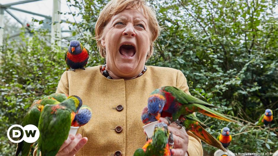 """""""أردت أن أقول وداعا"""".. لقطات طريفة لميركل مع الطيور"""