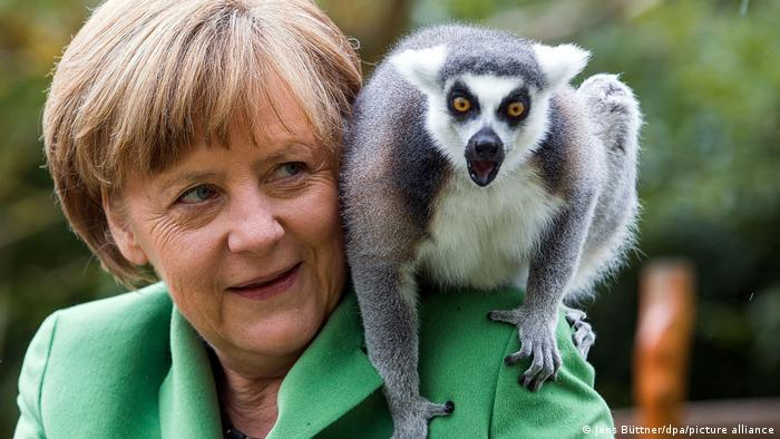 Angela Merkel with a lemur on her shoulder