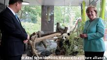 Bundeskanzlerin Angela Merkel (CDU) und der Staatspräsident vonChina, Xi Jinping, stehen am 05.07.2017 im Zoo in Berlin bei der Eröffnung der neuen Anlage für zwei Pandabären aus China. Die beidenPandas stammen aus einer chinesischen Zuchtstation und sind am 24.Juni in Berlin angekommen. Der Berliner Zoo ist damit der einzige Tierpark in Deutschland, der die seltenen Bären hält. Foto: Axel Schmidt/POOL Reuters/dpa ++ +++ dpa-Bildfunk +++