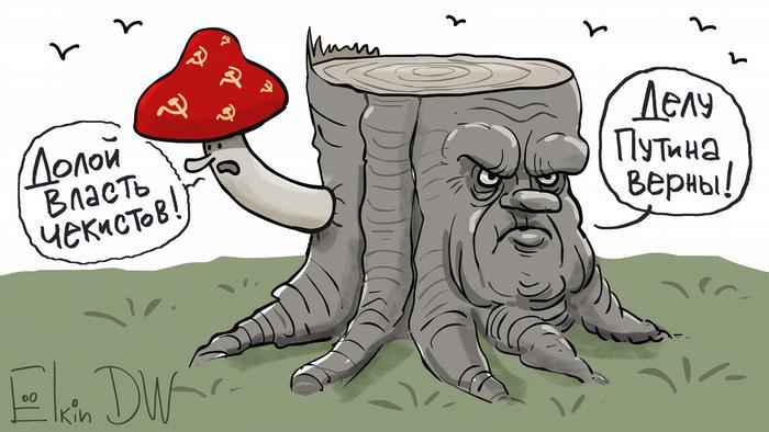 Пень с лицом Зыганова и гриб с другой стороны