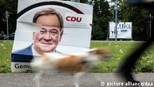Ein Hund geht an einem beschädigten Wahlplakat vom Armin Laschet (CDU) vorbei. Für Nordrhein-Westfalen geht es nach der Bundestagswahl um wichtige landespolitische Weichenstellungen, denn Ministerpräsident Armin Laschet (CDU) hat angekündigt, in jedem Fall nach Berlin zu wechseln. +++ dpa-Bildfunk +++