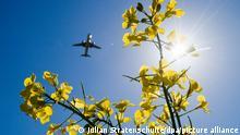 Ein Passagierflugzeug im Anflug auf den Flughafen Hannover fliegt über ein Rapsfeld hinweg. Zum Auftakt internationaler Klimaschutz-Gespräche beim 10. Petersberger Klimadialog hat Bundesumweltministerin Schulze für Deutschland ein «starkes Klimaschutzgesetz» noch in diesem Jahr angemahnt.