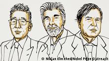 Illustration: Nobelpreis für Physik 2021 für Syukuro Manabe, Klaus Hasselmann and Giorgio Parisi
