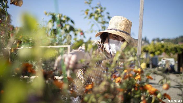 Sarah gardening while wearing a sun hat