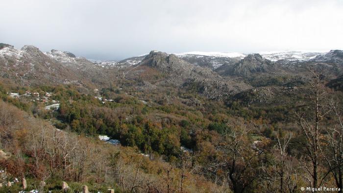 A view of rewilded fields in Peneda-Gerês-National Park