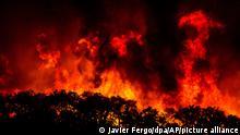 Ein Feuer schlägt auf einem Hügel nahe der Kleinstadt Monchique Flammen. Feuer verbreiten Angst und Schrecken, vernichten Natur und Häuser, ja ganze Existenzen - und sie haben dennoch auch etwas Faszinierendes. (zu dpa «Wenn Europa brennt - Die Macht des Feuers»: Eine tödliche Gefahr) +++ dpa-Bildfunk +++