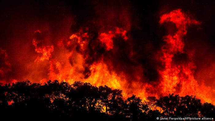 A wildfire in Portugal