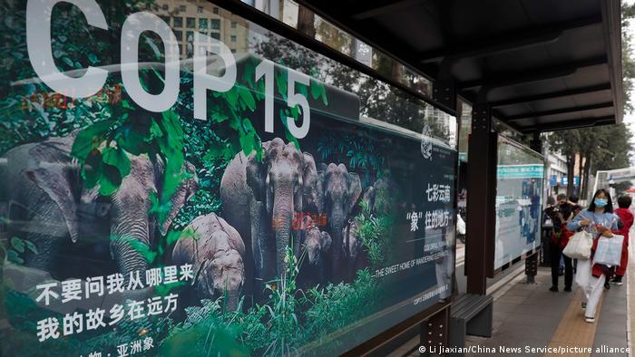 China Kunming UN - Biodiversitätskonferenz COP 15