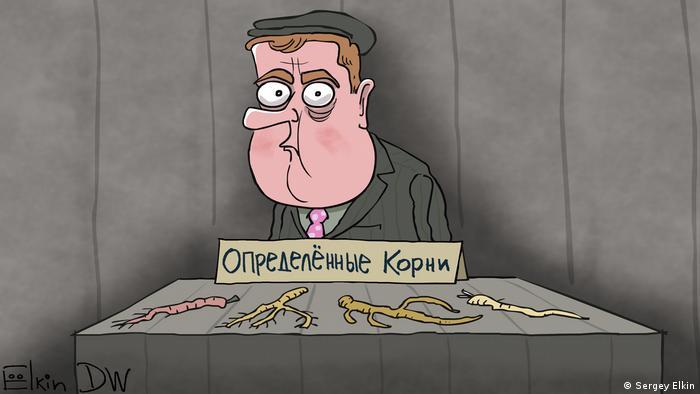 Дмитрий Медведев, перед которым на столе разложены разные корни растений