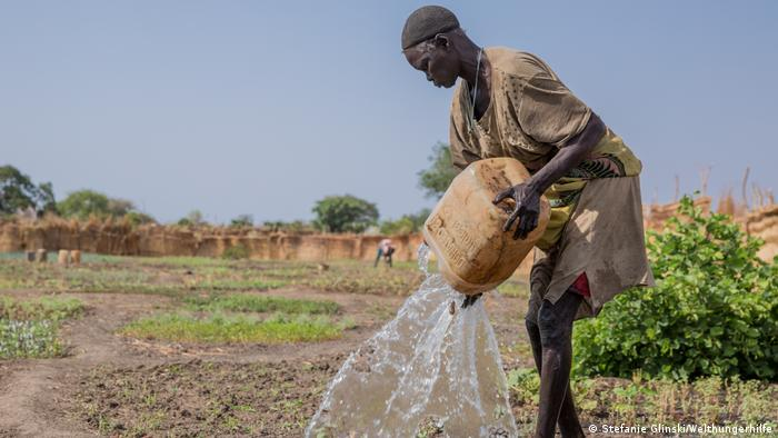 A farmer watering her field