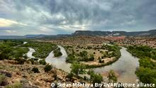 This Aug. 31, 2021 photo shows a bend in the Rio Chama near Abiquiu, New Mexico. Traditional irrigation systems known as acequias that depend on the river are feeling more pressure as drought persists and climate change piles on with warmer temperatures. (AP Photo/Susan Montoya Bryan)