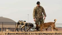 Dec 17, 2020 - Scott Air Force Base, Illinois, USA - U.S. Air Force Staff Sgt. Carmen Pontello, 375th Security Forces Squadron military working dog trainer, introduces Hammer, 375th SFS military working dog, to the Ghost Robotics Vision 60 at Scott Air Force Base, Ill., Dec. 17, 2020. The Vision 60 resembles a K-9, but is not designed to replace MWDs. (Credit Image: © Shannon Moorehead/U.S. Air Force/ZUMA Wire/ZUMAPRESS.com