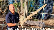 In this photo provided by Israel's Antiquities Authority, Nir Distelfeld, Inspector for the Israel Antiquities Authority's holds an ancient sword after it was discovered by an Israeli diver off the country's Mediterrean coast near Haifa, Israel, Oct. 14, 2021. An Israeli scuba diver has salvaged an ancient sword off the country's Mediterrean coast that experts say dates back to the Crusaders. Israel's Antiquities Authority said the man was on a weekend dive in northern Israel last Saturday when he spotted the sword. Fearing his discovery might be buried, the diver took the sword, estimated to be 900 years old, ashore and delivered it to government experts, the authority said. (Israel's Antiquities Authority via AP)