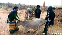 19.10.2021, Dürre in Borena Süd Äthiopien.