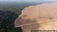 Brasilien Stamm der Yawalapiti