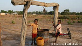 Children with plastic water buckets in the Gambia