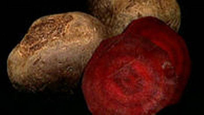 13.10.2010 DW-TV Fit und gesund Rote Bete 1