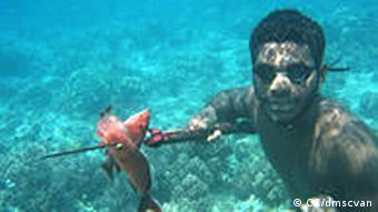 Mann unter Wasser fängt Fische (Quelle: CC/dmscvan, http://creativecommons.org/licenses/by-nc-nd/2.0/)