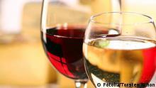 Essen Gericht Wein Glas Rotwein und Weißwein