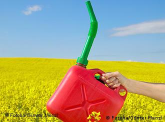 A gas can is held in front of a field of rape