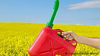 Fuel canister being held over a rapeseed field