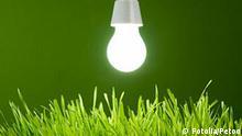 Umwelt Symbolbild grüne Energie Glühbirne über Wiese
