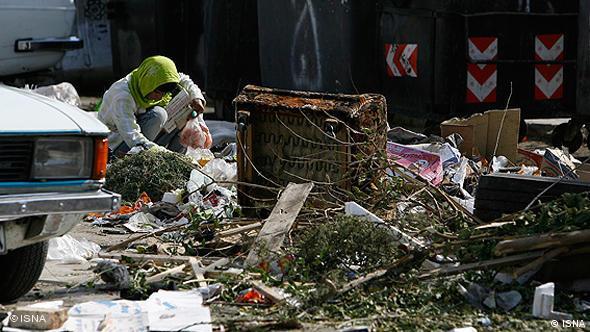 ریختن پسمانده غذا در معابر یا جوی آب موجب افزایش موشها در سطح شهر شده است