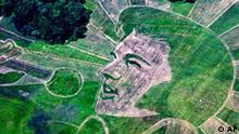Todestag Elvis Presley Porträt im Feld
