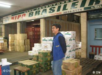 Nipo-Brasileiro: The vegetable market provides jobs for many of Sao Paulo's Japanese community
