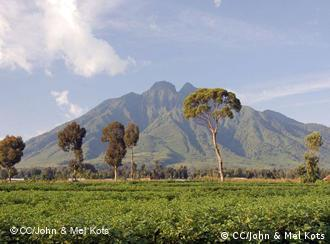 The Virunga mountain range