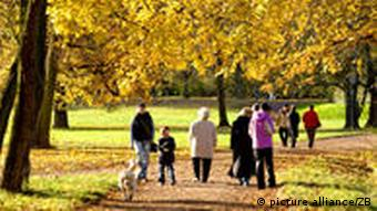 People walking under the autmnal trees of a park