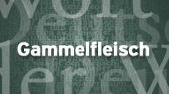 übersetzung jugendsprache deutsch