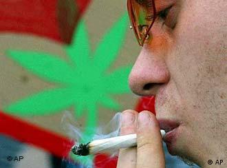 软性毒品带来恶性后果 - 大麻是最为流行极具危险的软性毒品