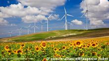 Flash-Galerie Themen der Grünen Energie