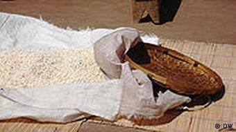 Mais: ein Grundnahrungsmittel in Mosambik (DW)