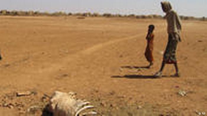 UN Millennium Ziele 1 Hunger (AP)
