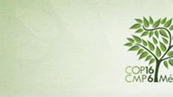 Dossierbild Klimagipfel Cancun Mexiko 2010 Logo Bild 1