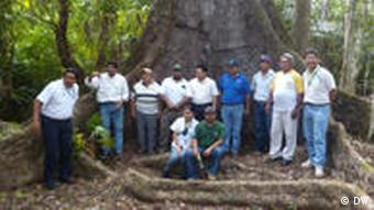 Waldmanagement in mexiko
