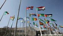 Afrikanische Union Flaggen