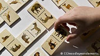 Holzspielzeug mit Tierbildern