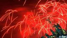 Bunte Raketen steigen am Samstag (01.01.11) in Berlin hinter dem Brandenburger Tor waehrend der Feierlichkeiten zu Silvester in den Himmel. In ganz Deutschland haben Menschen das neue Jahr mit Raketen begruesst. Foto: Oliver Lang/dapd