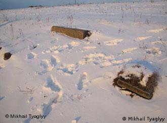Следы массовых захоронений в украинском селе Острожец