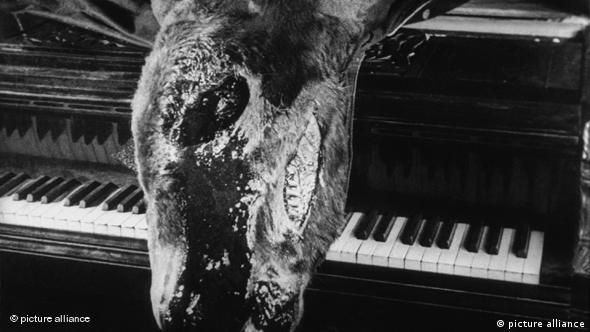 صحنهای از فیلم سگ اندلسی