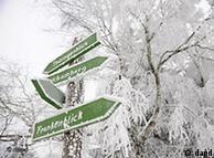 آلمان در سال ۲۰۱۰ زمستان سردی را تجربه کرد