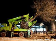 2011年2月,斯图加特铁路项目依然继续,警方护卫施工方移走大树